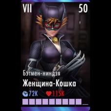 Женщина-Кошка Бэтмен-ниндзя
